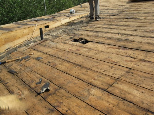 damage right to the wood -roof repair